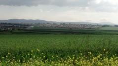 Ramat Yishai
