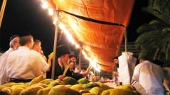 Sukkot_fruits