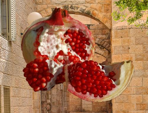 Single Foodie Living In Jerusalem